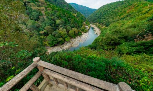 嵐山亀山公園